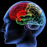 Neurology Medical Codes for Billing | Analysis and Programming CPT Codes